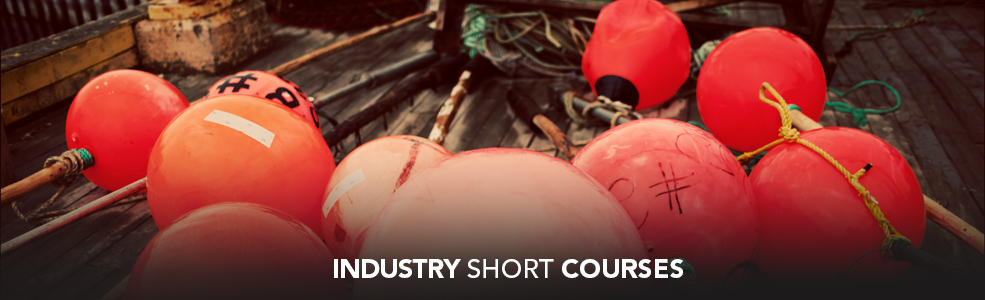 Short Courses CBED - banner